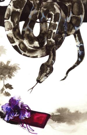 Pablo Piatti - GUCCI clutch & Burmess python